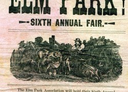 The Elm Park Fair