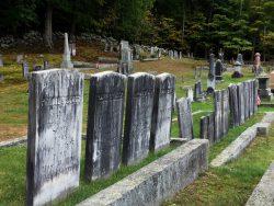 Row of gravestones in the Village Cemetery