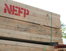 Sawmill Tour at New England Forest Products