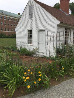 The Phoenix Mill House - Nancy Prescott