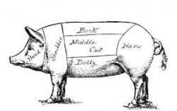 pig etching